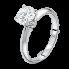 แหวนหมั้นเพชร (58)